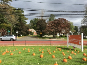Fall Harvest @ Fanwood-Scotch Plains YMCA | Scotch Plains | New Jersey | United States